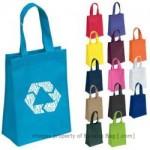 Standard Reusable Gift Bag