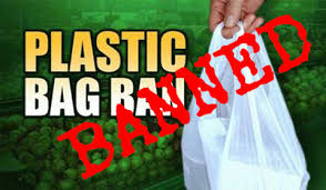 Reusable Shopping Bags Encouraged Despite Ban